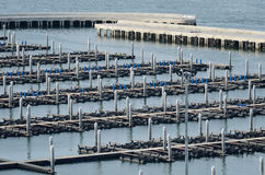 Area boat docks in the bay. Of Pattaya royalty free stock image