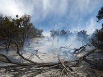 Area bruciata Fotografia Stock