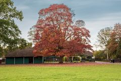 Area for childrens in park Blaise Castle Estate. Henbury, Brisol, England - October 23, 2018: Autumn in Blaise Castle park in Bristol, England. The play area is stock photography