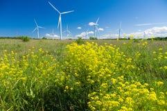 Area dei generatori eolici con i fiori della colza nella parte anteriore Fotografia Stock Libera da Diritti
