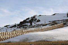 Area del Big Horn, Montana Fotografie Stock Libere da Diritti