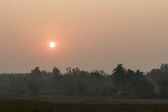 Area del campo di agricoltura con alba Fotografie Stock Libere da Diritti