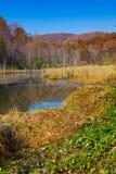 Area del nord della gestione della fauna selvatica del Cumberland Immagini Stock