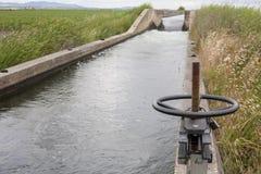 Area della cateratta al canale enorme di irrigazione, Estremadura, Spagna Fotografia Stock Libera da Diritti