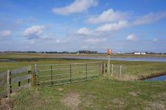 Area della riserva dell'uccello nei Paesi Bassi immagini stock libere da diritti