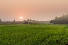 Area di agricoltura con alba Fotografia Stock