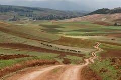 Area di agricoltura della depressione del passaggio della strada di zigzag della gente di inca, Cusco, Perù fotografie stock libere da diritti