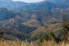 Area di agricoltura sull'alta montagna Fotografia Stock Libera da Diritti