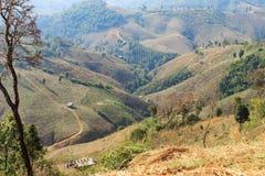 Area di agricoltura sull'alta montagna Immagine Stock Libera da Diritti