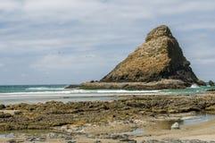 Area di incastramento degli uccelli acquatici sulla costa Fotografie Stock