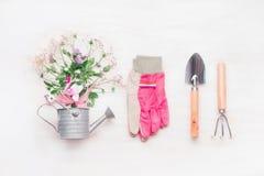 Area di lavoro di giardinaggio femminile, strumenti di giardino con i fiori in annaffiatoio su fondo di legno bianco, vista super Fotografia Stock