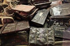 Area di Oswiecim, Polonia Auschwitz Fotografie Stock Libere da Diritti