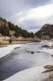 Area di ricreazione del canyon di Elevenmile in primavera Fotografia Stock