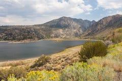 Area di ricreazione del lago grant Fotografia Stock