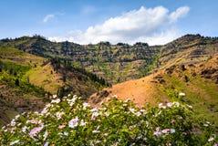 Area di ricreazione nazionale del canyon degli inferni Immagine Stock