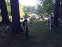 Area di riposo di ciclismo Fotografie Stock