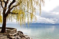 Area di riposo nel lago Ginevra, Losanna, Svizzera 1 Fotografia Stock Libera da Diritti