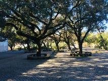 Area di riposo nel parco del santuario di Fatima fotografia stock