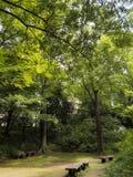 Area di seduta del giardino di Riykugien, Tokyo Fotografia Stock