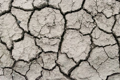 A area of dry land for a drought concept or metaphor. Background texture Royalty Free Stock Image