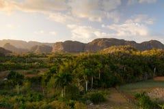 Area famosa del tabacco del terreno coltivabile di Cuba al tramonto, Valley de Vinales Fotografia Stock Libera da Diritti