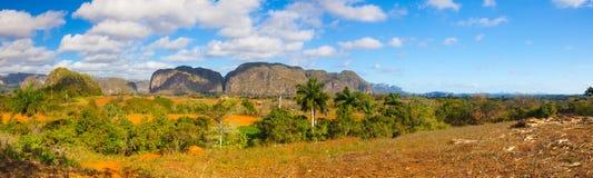 Area famosa del tabacco del terreno coltivabile di Cuba, Valley de Vinales, Cuba Immagine Stock Libera da Diritti