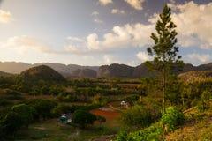 Area famosa del tabacco del terreno coltivabile di Cuba al tramonto, Valley de Vinales, C Immagini Stock Libere da Diritti