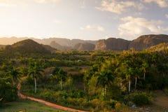 Area famosa del tabacco del terreno coltivabile di Cuba al tramonto, Valley de Vinales, C Fotografie Stock
