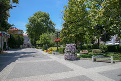 The area with flowers and trees in the city in the summer. The area with flowers and trees in the city in the summer Stock Photo