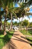 Area of hotel Melia Cayo Guillermo. Cuba royalty free stock image