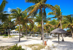 Area of hotel Melia Cayo Guillermo. Royalty Free Stock Photo