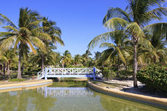 Area of hotel Sol Cayo Largo. Cuba royalty free stock images