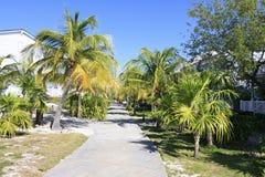 Area of hotel Sol Cayo Largo. Cuba royalty free stock photos