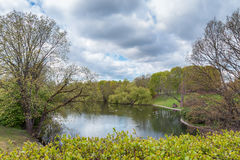 Area naturale svedese fotografia stock libera da diritti