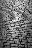 The area paved with stone. Royalty Free Stock Photos