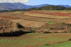 Area rossa della terra nel Yunnan Immagini Stock
