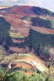 Area rossa della terra nel Yunnan Immagine Stock Libera da Diritti