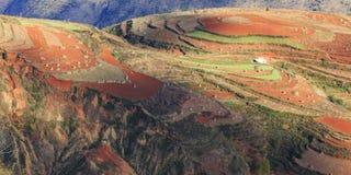 Area rossa della terra nel Yunnan Fotografia Stock