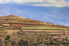 Area rossa della terra nel Yunnan Immagine Stock