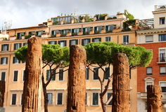 Area Sacra Ruins , Rome Stock Photo