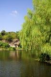 Area scenica orientale di Shaoxing Cina del lago fotografia stock