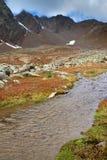 Area umida nelle montagne Immagini Stock Libere da Diritti