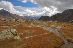 Area umida nelle montagne Fotografie Stock
