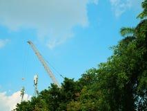 Area verde diagonale del cespuglio dell'albero, alta gru di costruzione gialla, fondo del cielo blu Fotografia Stock Libera da Diritti