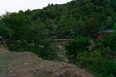 Area vivente in villaggio montagnoso Vista di sera nella foresta immagine stock libera da diritti