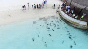 Areal sikt av den Maldiverna semesterorten Royaltyfria Bilder