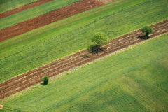 Areal view. Of a cultivation in Macedonia from a helicopter Stock Images