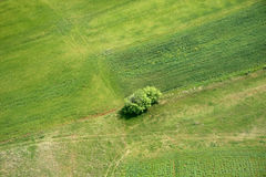 Areal view. Of a cultivation in Macedonia from a helicopter Royalty Free Stock Photos