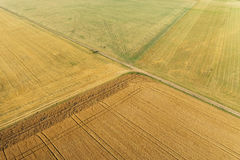 Areal view of corn field. Areal view of crop fields in sunny summer day royalty free stock images