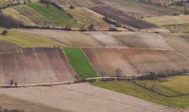 Areal view of a cultivation Royalty Free Stock Images
